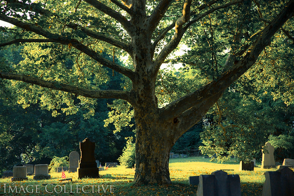 Voegtly Cemetery