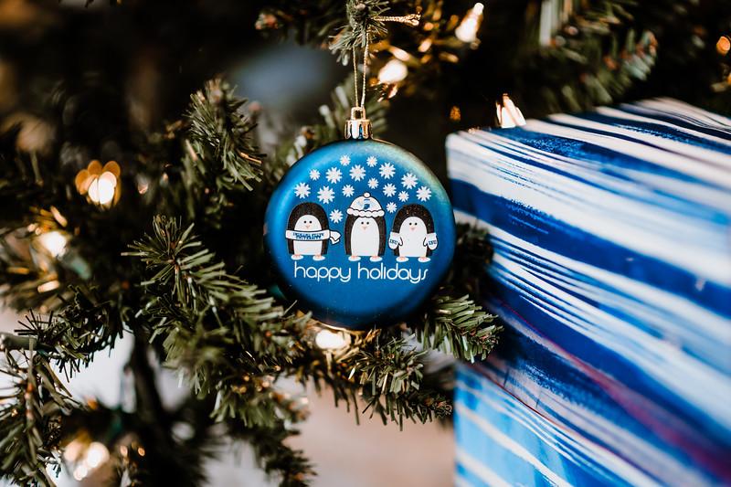 December 06, 2018 happy holidays DSC_3192.jpg