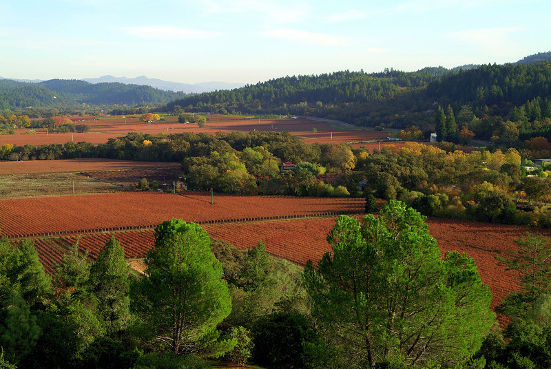 Aerial View of Sterling Vineyards Napa Valley, California