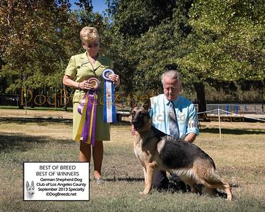 German Shepherd Dog Club of Los Angeles County - September 2013