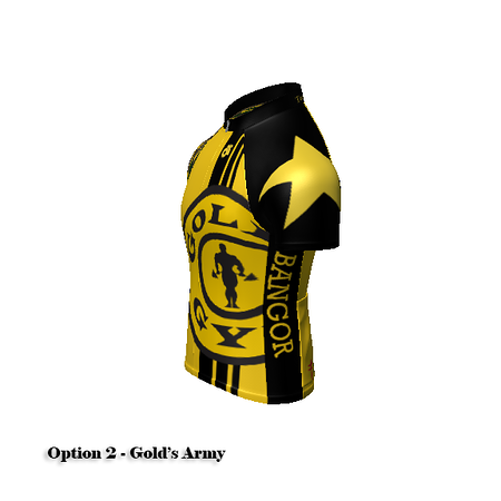 champ-sys_g00024.png