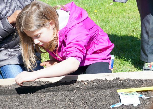 Spring Gardening [4-14-16]