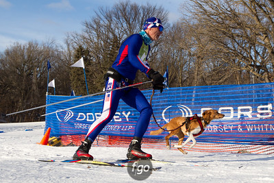 2-1-15 Loppet Sunday - Chuck & Don's Skijoring Loppet and  Subaru Two-Dog National Championship