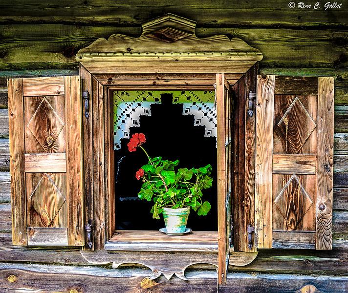 portal Strasbirg -13 (8 of 1).jpg