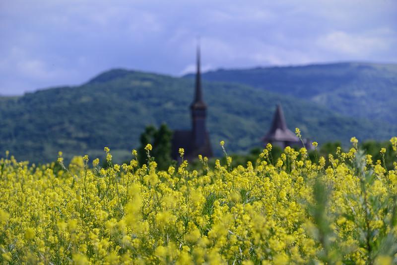 Ieud Monastery - Maramureș