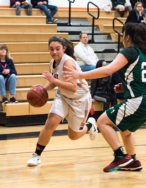 Varsity Girls 2017-8 (WM) Basketball-8186.jpg
