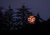 Moonrise, Alaska