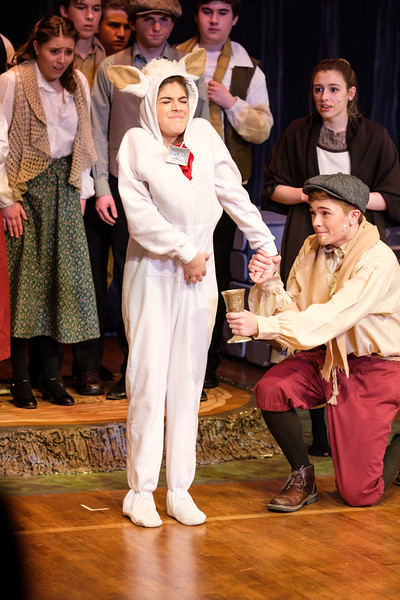 2018-03 Into the Woods Performance 0507.jpg