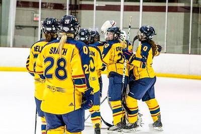 Women's Hockey - Queen's at York 20140111