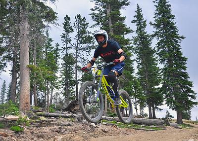 Trestle Bike Park 2015
