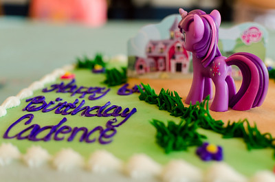 Cadence's 6th Birthday