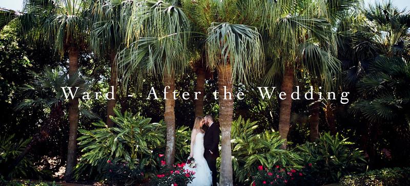 TEP Blog Header - Ward After the Wedding.jpg