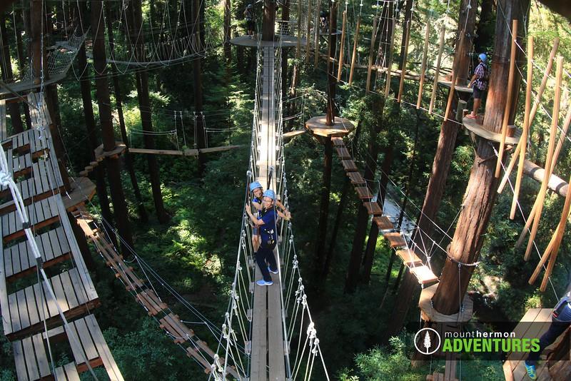 sequoiaportrait_1473455761419.jpg