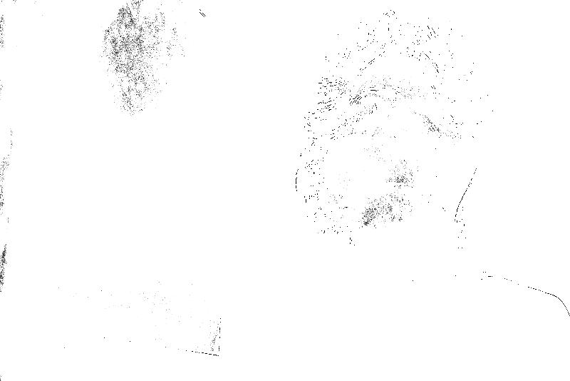 DSC05839.png