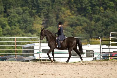 4H Districts 09/17/11 Saddle Seat