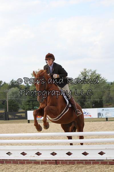 "Saturday: Large Ponies (2'6"")"