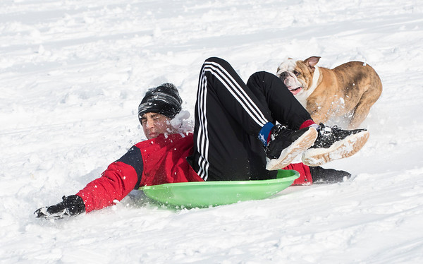 12/03/19 Wesley Bunnell | StaffrrMarcel Saavedra is chased by the family bulldog Roxy down a snowy hill at Smith Elementary School on Tuesday December 3, 2019.