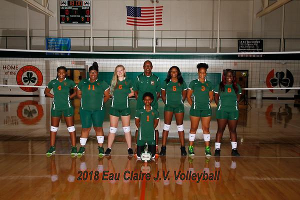 2018 JV Volleyball