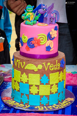 Viv_Veda_4th_Bday