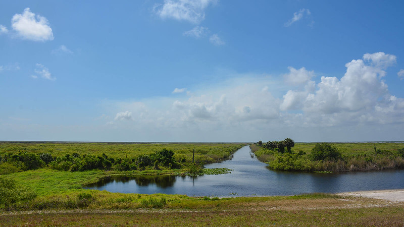 Florida Trail Dyess Ditch