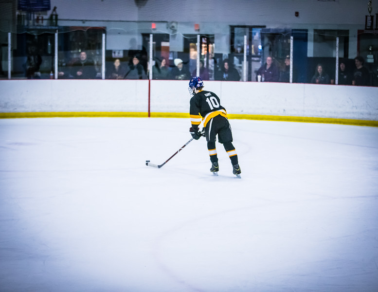 Bruins2-604.jpg