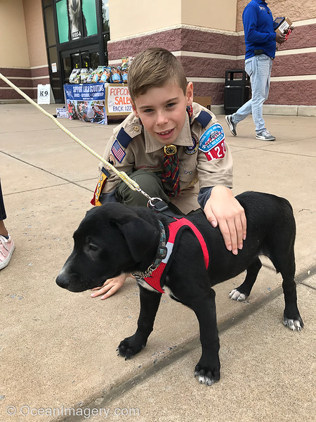 20191018 Arlington, VA - Dylan's New Puppy Scout