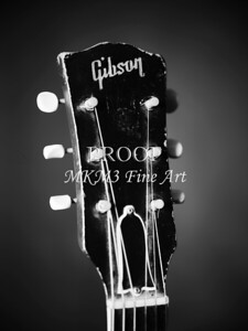 Gibson ES 330 Guitar in Black and White set 2109
