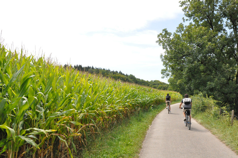 Along the Würm river to the Starnbergersee