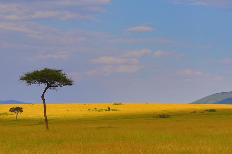 Kenya Landscape 2.JPG