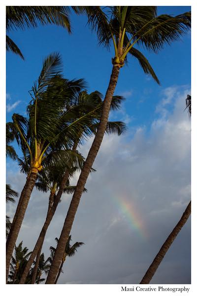 Maui-Creative-Destination-Wedding-0200.jpg