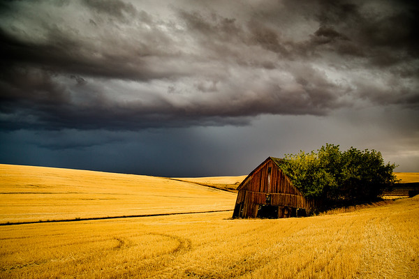 The Palouse, Washington