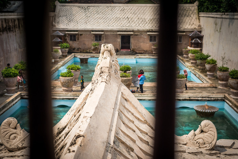 The Main Pool from the Tower