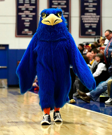 3/5/2019 Mike Orazzi | Staff The St. Paul Catholic High School Falcon during the Class S Quarterfinals Girls Basketball Game with Bloomfield Tuesday night.