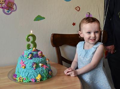 Abbie's 3rd Birthday - Jan 12, 2019