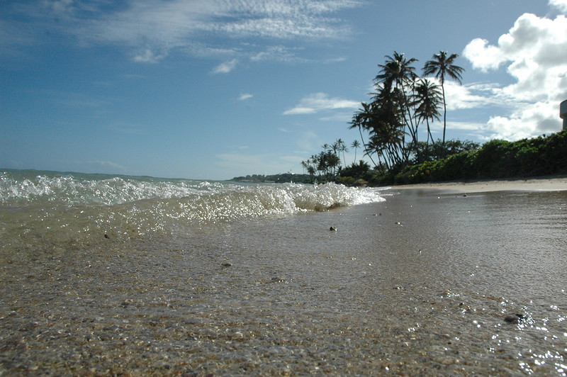 Hawaii - Kahala Beach-79.JPG