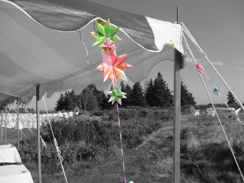 origamicolor.jpg