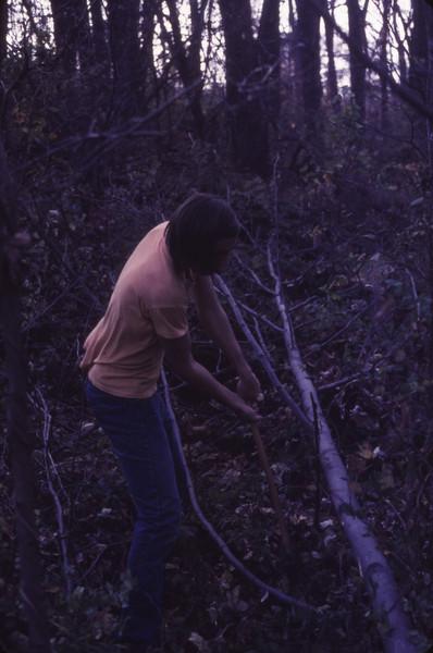 Cabin 1975 - 006.jpg