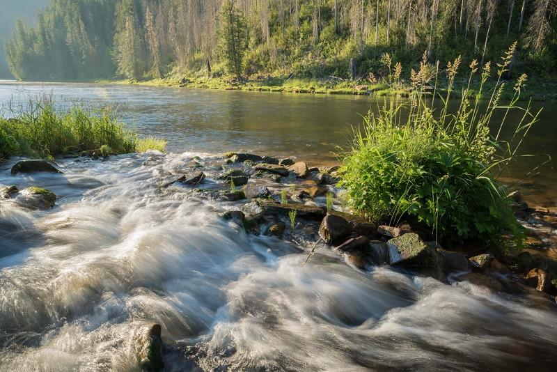 Rackliff Creek Outlet Morning - Selway River.jpg
