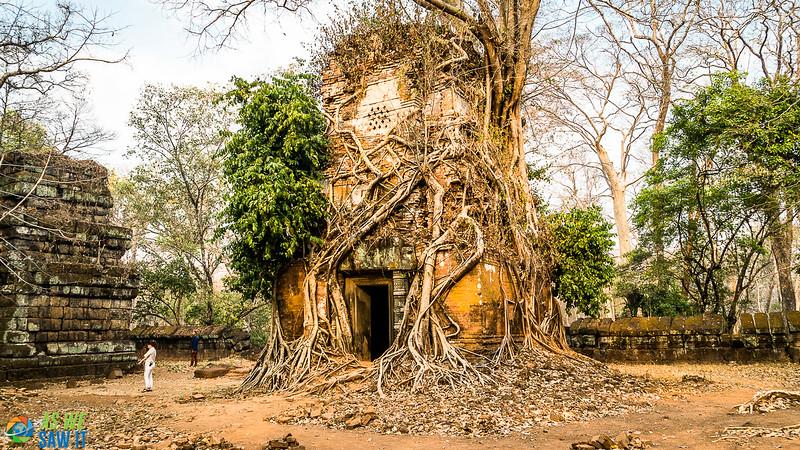 Temple-2-05957.jpg