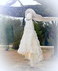 lauren and darius wedding day