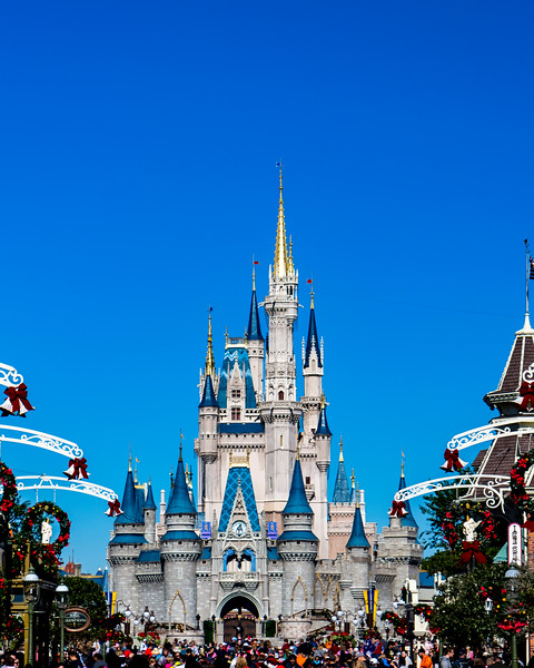 Magic Kingdom-6069.jpg