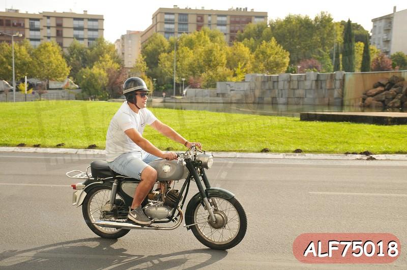 ALF75018.jpg