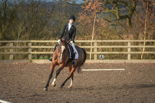 Lincomb EC Unaffiliated Dressage, 3rd December 2017