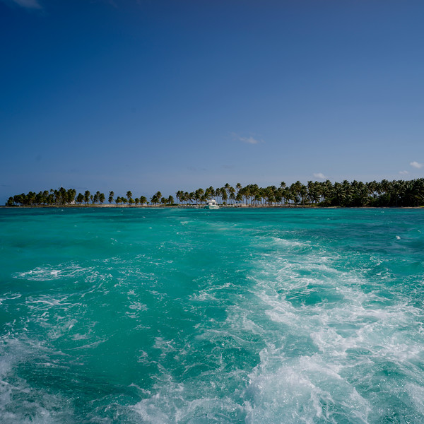 Wake formation in the sea with beach in the background, Half Moon Caye, Lighthouse Reef Atoll, Belize