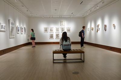 Art Mingled Terrain Exhibit