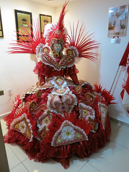 Acadêmicos do Salgueiro - Carnaval de 2014
