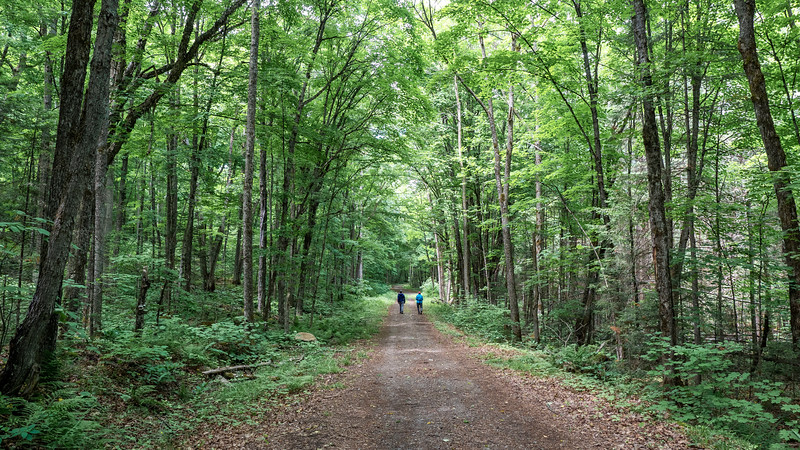 Arrowhead-Provincial-Park16.jpg