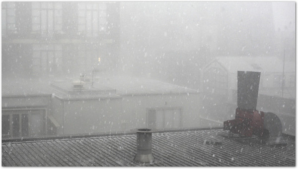 The Great Melbourne Hailstorm of 2010