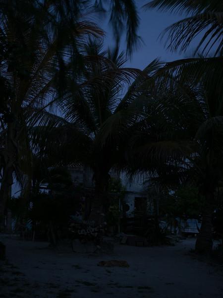 Mahajaul Mex 2016-4120182.jpg