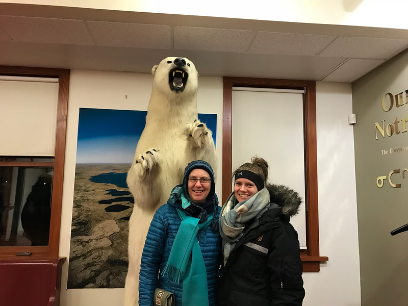 Big polar bear in the hotel lobby in Churchill; note the size of the paws compared to our heads.